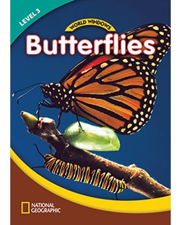 Butterflies - World Windows - Level 3