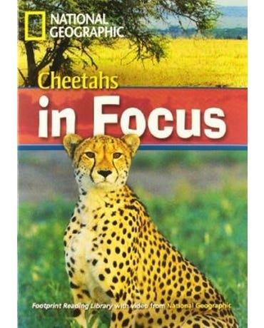 Cheetahs In Focus - Footprint Reading Library - British English - Level 6 - Book