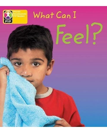 What Can I Feel? - Pyp - Level 3