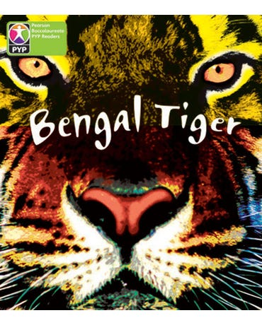 Bengal Tiger - Pyp - Level 4