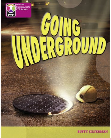 Going Underground - Pyp - Level 8